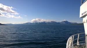 Arktisk fjordcruise 1
