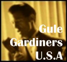 Gule Gardiners USA 225
